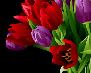Red & Lavender Tulips